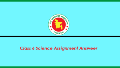 Class 6 Science Assignment Answer