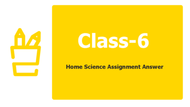 Class 6 Home Science Assignment